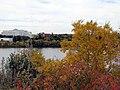 Autumn Riverbank (6583967177).jpg