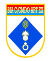 BIA CMDO ART EX.png