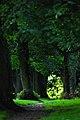 Backhouse Park - panoramio - somaliayaswan (9).jpg