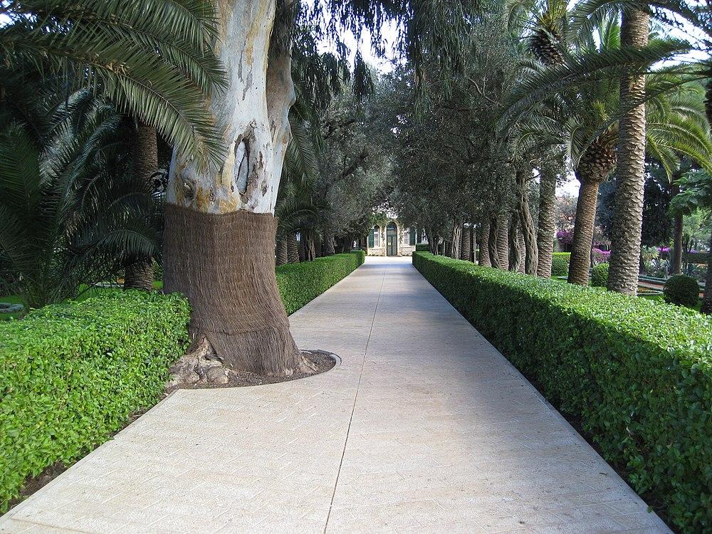 Baha'i Gardens (2535223194)
