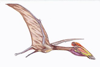 Santonian - Reconstruction of Bakonydraco