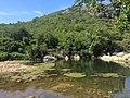 Ballıkayalar Göl ve Piknik Alanı.jpg