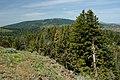 Balsamroot & Valleys from Fall Mountain-Malheur (23849263241).jpg