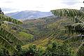 Banga, Burundi 3 (5669419104).jpg