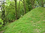 Castle Neroche: a motte and bailey castle and earlier defences above Castle Plantation