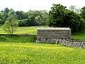 Barn in Colourful Meadowland - geograph.org.uk - 459259.jpg