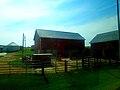 Barns East of Lodi - panoramio.jpg