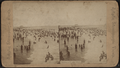 Bathing at Coney Island, from Robert N. Dennis collection of stereoscopic views.png