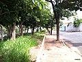 Bauru - SP - panoramio (42).jpg