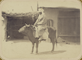 Bazaar Types. A Woman Riding an Ox WDL11194.png