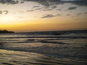 Tamarindo, Costa Rica - The coastline in Tamarindo