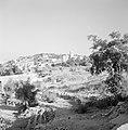 Bebouwing en begroeiing rondom Jeruzalem, Bestanddeelnr 255-2307.jpg