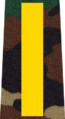 Belarus MIA—13 Master Sergeant rank insignia (Camouflage).png