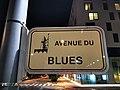 Belvaux, avenue du Blues (101).jpg
