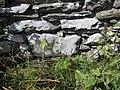 Bench mark on Near Intake Barn - geograph.org.uk - 1452871.jpg