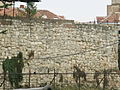 Beogradska tvrđava 0101 17.JPG