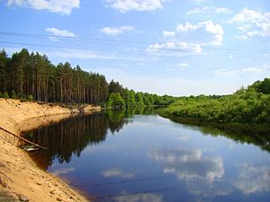 Berezina River - Berezina River in Belarus