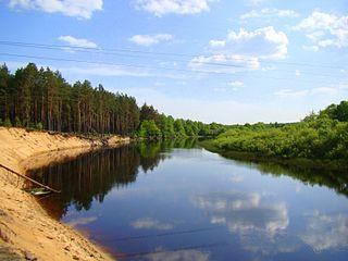Berezina River river in Belarus