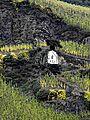 Beste Weinlagen an der Mosel. 06.jpg