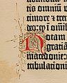 Biblia de Gutenberg, 1454 (Letra N) (21213538303).jpg