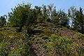 Bieszczady. Gołoborze obok kamieniołomu Rabe Gruby w Dolinie Rabego. - panoramio.jpg