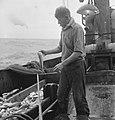 Bijschrift On board a Dutch trawler Aan boord van een Nederlandse vistrawler, Bestanddeelnr 935-3061.jpg