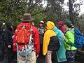 BioBlitz 2015 in Hawaii Volcanoes National Park (17843284936).jpg