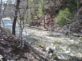 Black Creek (Nescopeck Creek tributary)
