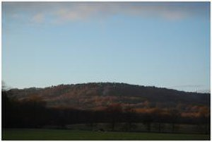 Blackdown, West Sussex - View from two miles away