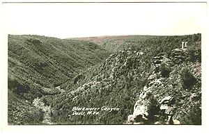 Blackwater Canyon - Blackwater Canyon (Postcard of circa 1930)