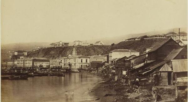 Blanco 1860 anglicana.jpg