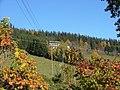 Blenderheim am Blender - panoramio.jpg