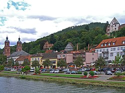 View of Miltenberg over the Main river