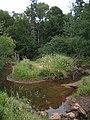 Bloomfield Provincial Park IMG 8179 (1849018668).jpg
