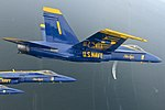 Blue Angels training flight 130814-N-SH953-226.jpg