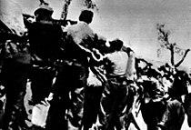 Borci bataljona Dimitrov.jpg