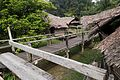 Borneo aboriginal village (29549921771).jpg
