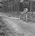 Bosbewerking, arbeiders, boomstammen, gereedschappen, Bestanddeelnr 251-7400.jpg