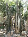Botanička bašta Jevremovac 054.JPG