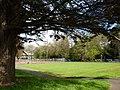 Bowling green, Upton Park, Torquay - geograph.org.uk - 1842692.jpg