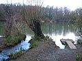 Bradley Pond - geograph.org.uk - 151511.jpg