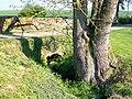Bray, hameau de la commune de Rully (60), pont sur l'Aunette près du prieuré.jpg