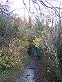 Bridle Path to Hempstead Road - geograph.org.uk - 1043734.jpg