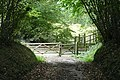 Bridleway at Common Hill - geograph.org.uk - 987930.jpg