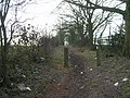 Bridleway near Lambley House - geograph.org.uk - 1758663.jpg
