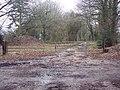 Bridleway to Bishopstone via Flamstone Farm - geograph.org.uk - 298877.jpg