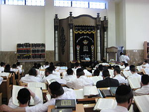 Brisk tradition and Soloveitchik dynasty - Men learning in the Brisk Yeshiva in Jerusalem of Rabbi Avrohom Yehoshua Soloveitchik.
