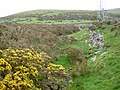 Brook and gorse (up) - geograph.org.uk - 804402.jpg
