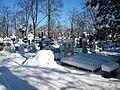 Bucuresti, Romania, Cimitirul Bellu Catolic (Morminte intr-o zi de iarna foarte geroasa) B-IV-a-B-20118.JPG