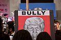 Bully May Day 2017 in New York City(34388583426).jpg